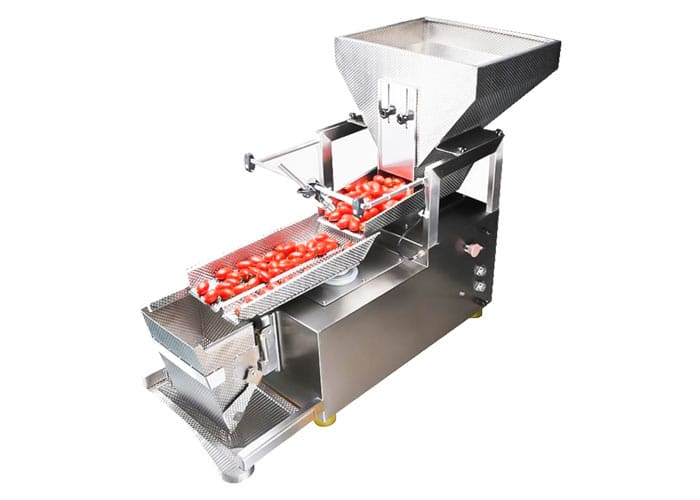 lenis-semi-automatic-linear-weigher-manual-packing-machine